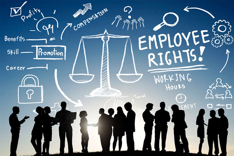 How to find the best Employment lawyer for your case, read to know ...